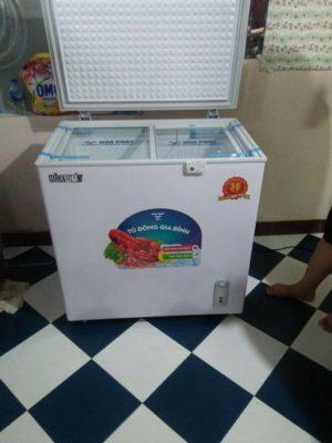 Tủ đông lạnh trữ sữa mẹ chuyên dụng 162 lít