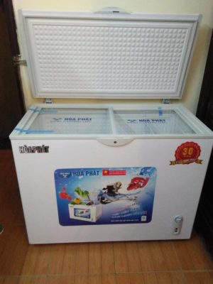 Tủ đựng kem Hòa Phát HCF 500 S1P chuyên dụng 252 lít mặt kính